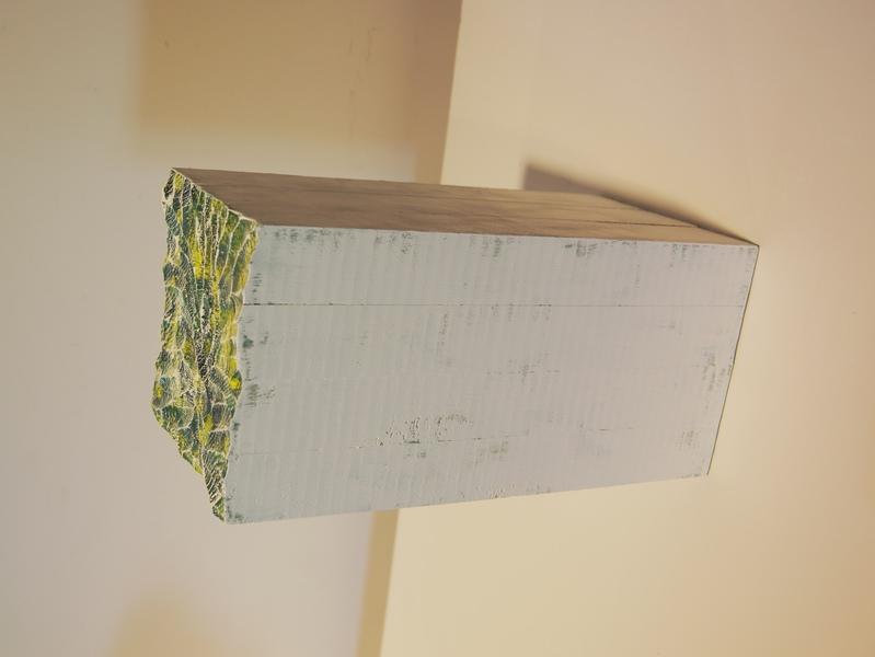 山之藻2.5