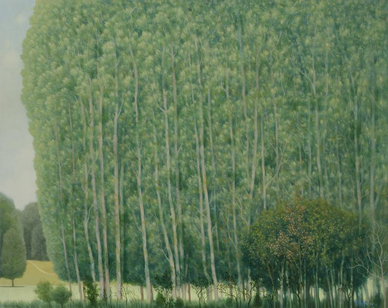 樹叢與小徑
